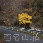 八経ヶ岳58