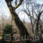 八経ヶ岳14